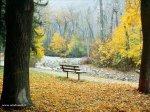 foto_autunno_351